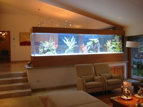 Un acuario en casa ideas para decorar decoracion in for Acuarios originales