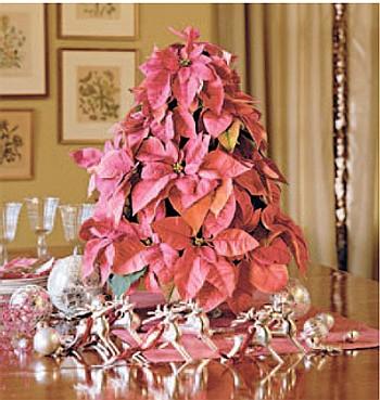 Apuesta a una Navidad Rosa!