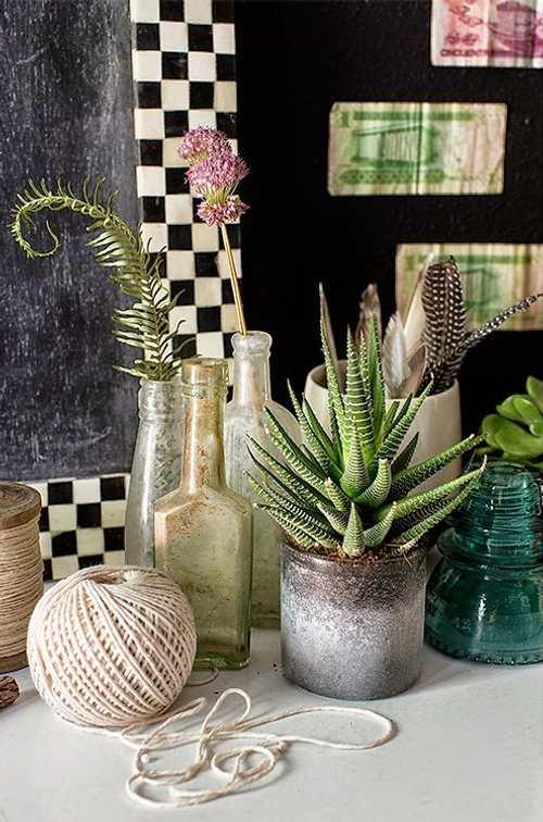 detalles decorativos naturales
