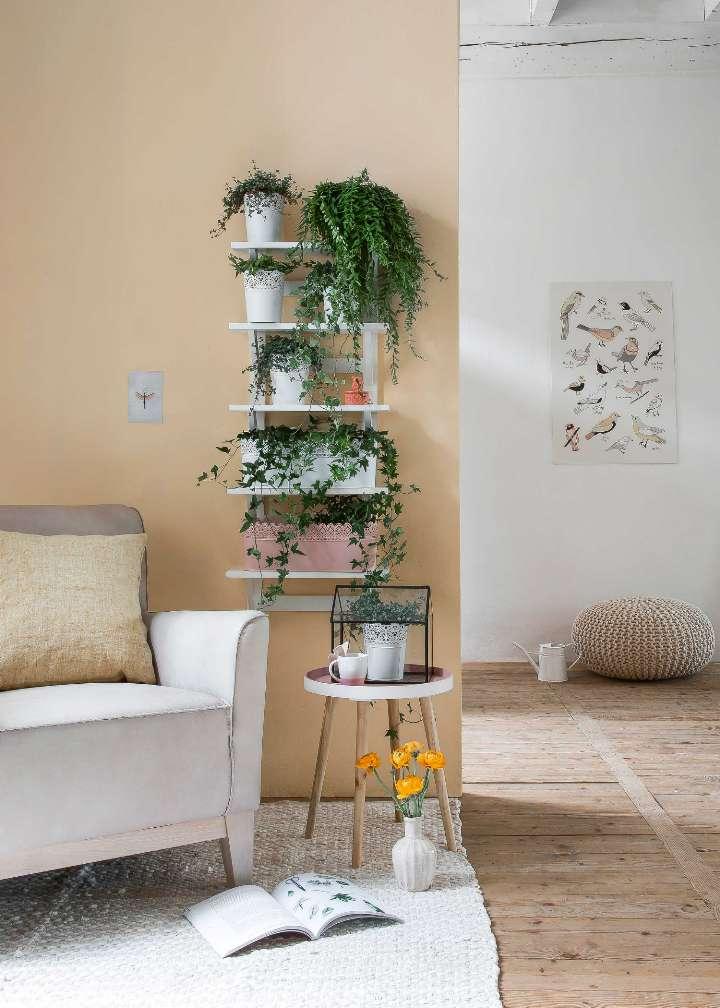 estantes decorativos