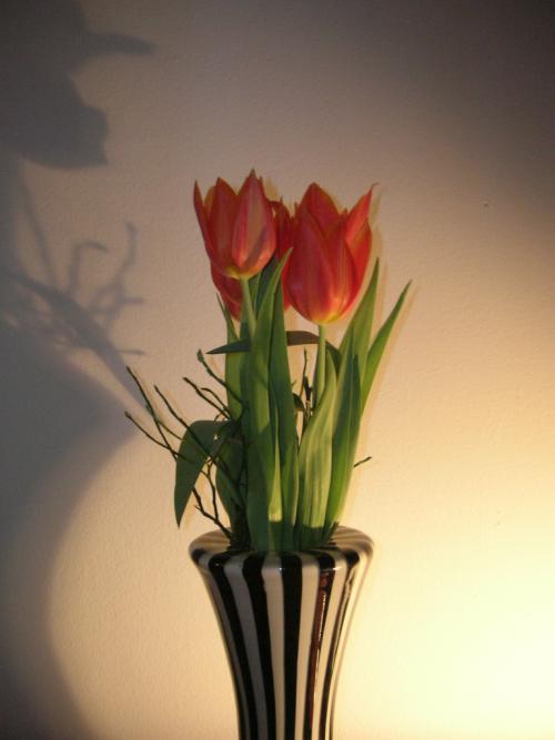 ideas-decorar-san-valentin-flores