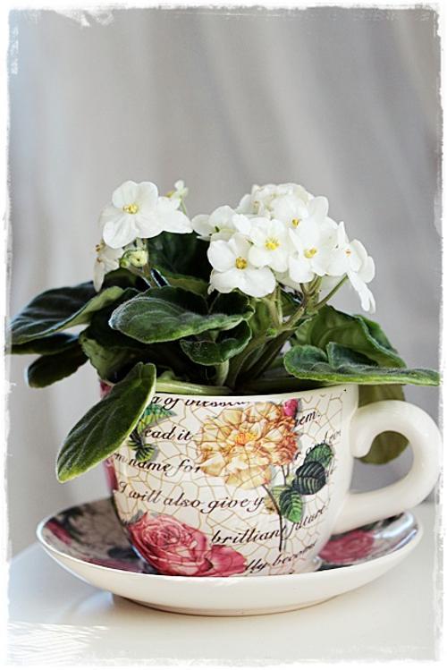 Tazas de porcelana usos originales decoracion in for Adornos originales para decorar casa