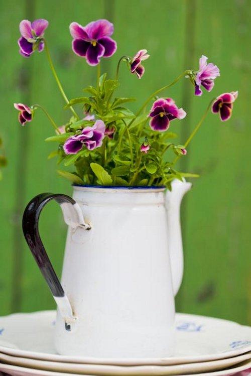 Improvisando tiestos macetas y jarrones decoracion in for Decoracion de macetas para plantas