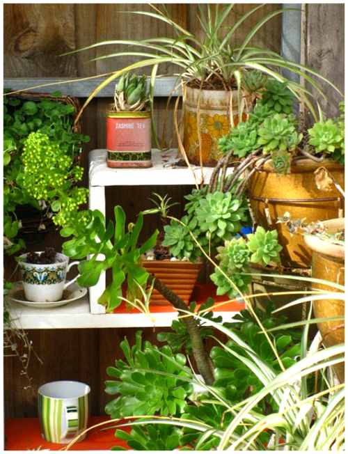 Jardines con ideas para inspirarse decoracion in for Estanteria jardin plantas