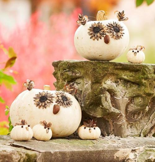 Decoracion De Baño Halloween:Ideas Para La Decoración De Interiores Baños Cocinas Dormitorios