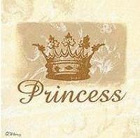 premio-princess