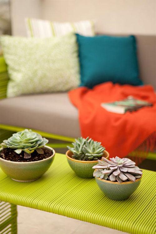 Rincones con encanto plantas crasas o suculentas en casa for Plantas crasas interior