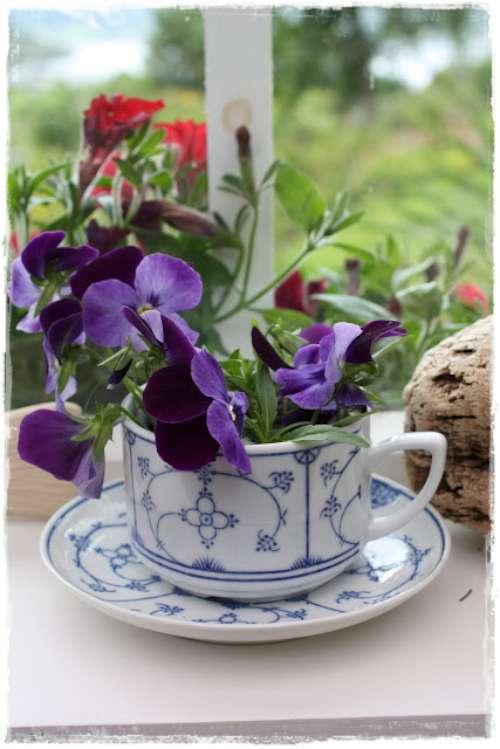 tazas con flores
